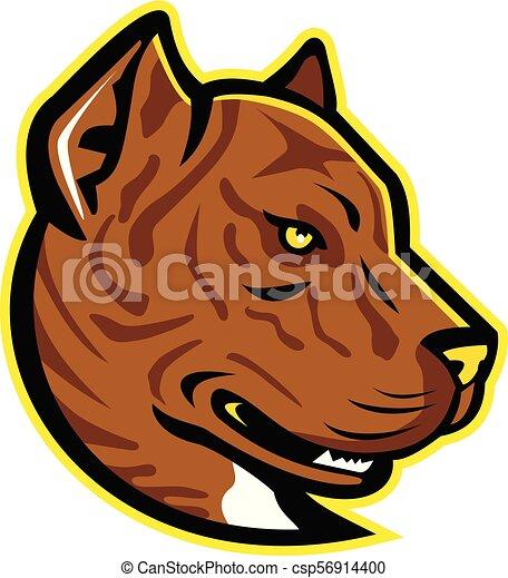 Alano-Espanol-Bulldog-HEAD-MASCOT - csp56914400