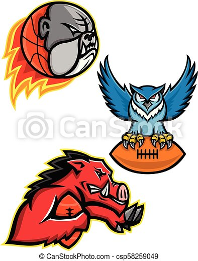 American Football and Basketball Wildlife Sports Mascot Collection - csp58259049