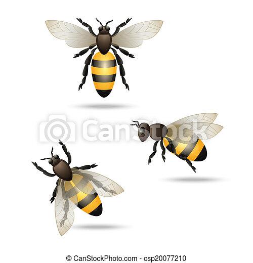 Bees icons set - csp20077210