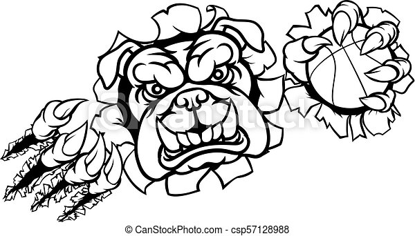 Bulldog Basketball Sports Mascot - csp57128988