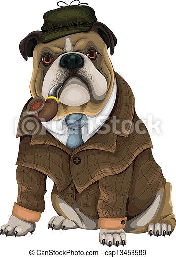 Bulldog Sherlock - csp13453589