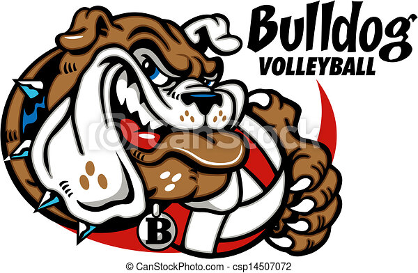 bulldog with volleyball - csp14507072