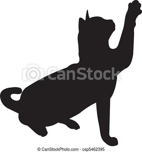 Cat vector - csp5462395