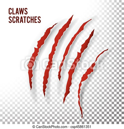 Claws Scratches Vector. Claw Scratch Mark. Bear Or Tiger Paw Claw Scratch Bloody. Shredded Paper - csp45861351