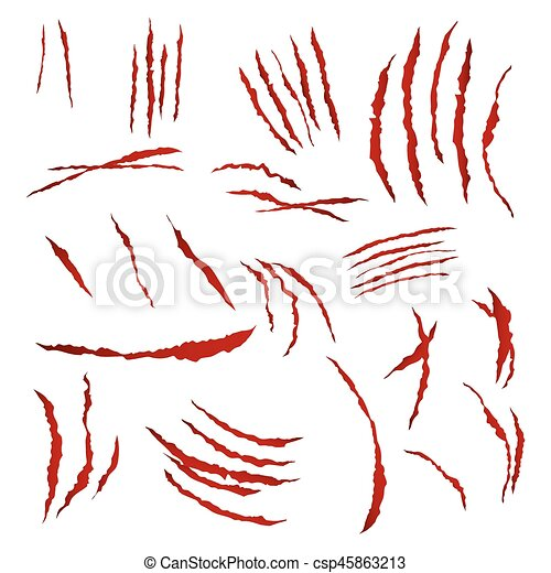 Claws Scratches Vector. Isolated On White Background. Bear Or Tiger Paw Claw Scratch Bloody. Shredded Paper - csp45863213