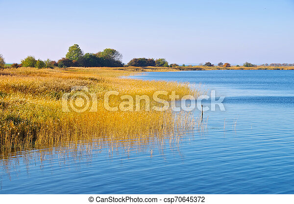 coast on island Ummanz, Ruegen in Germany - csp70645372