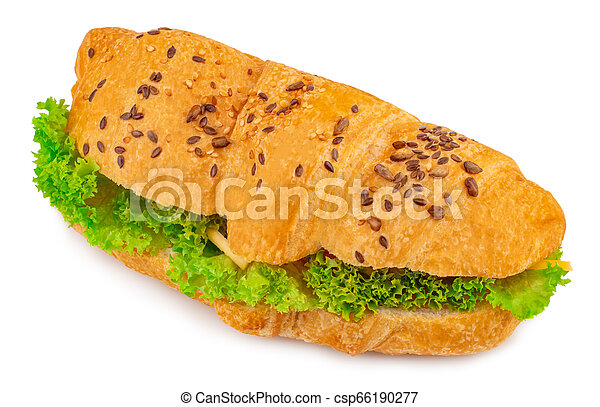 croissant sandwich with cheese isolated on white background - csp66190277