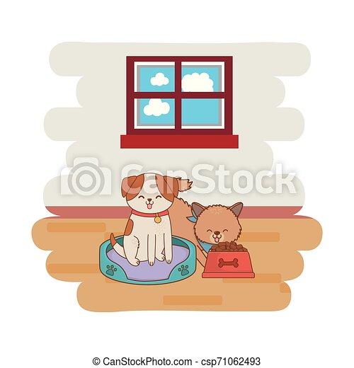 cute funny pets cartoon - csp71062493