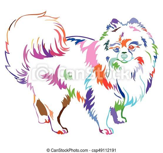 Decorative standing portrait of Dog Pomeranian (Spitz) vector illustration in rainbow colors - csp49112191