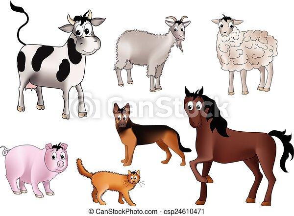 Domestic animals - csp24610471