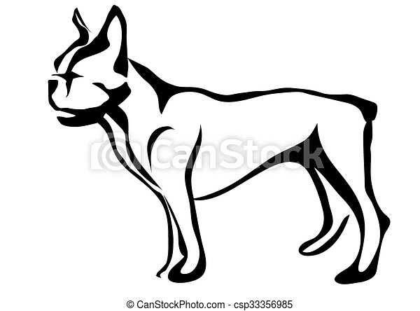 french bulldog - csp33356985