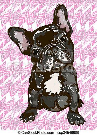 French bulldog - csp34549989