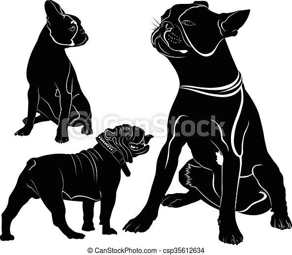 French Bulldog - csp35612634