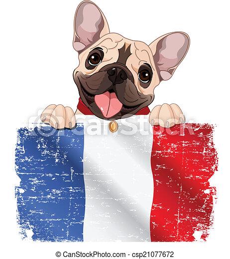 French bulldog fan - csp21077672