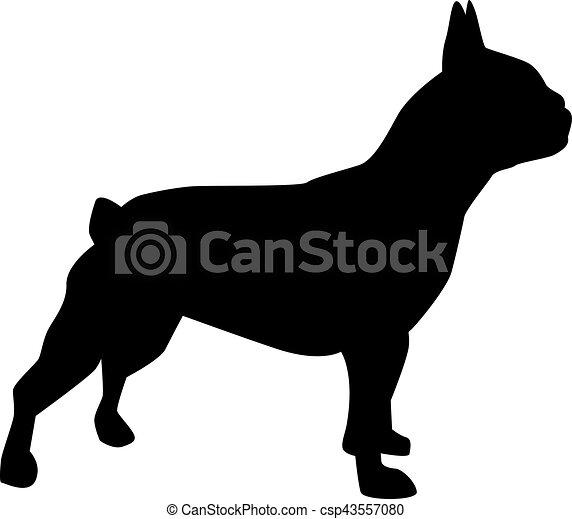 French bulldog silhouette - csp43557080