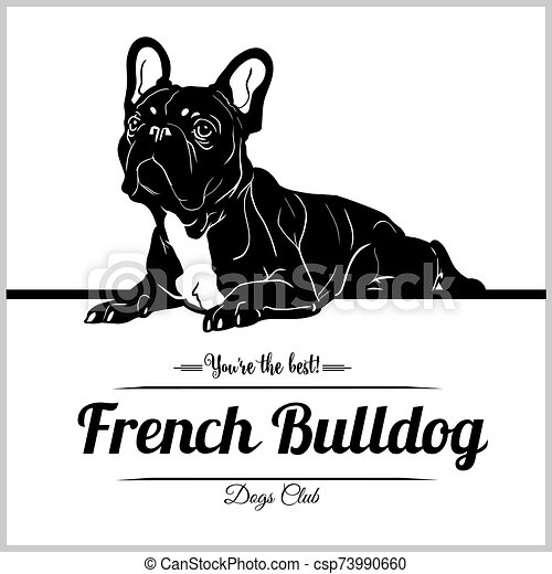 French Bulldog - vector illustration for t-shirt, logo and template badges - csp73990660