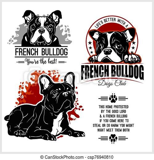 French Bulldog - vector set for t-shirt, logo and template badges - csp76940810
