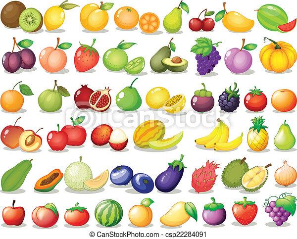 Fruit set - csp22284091