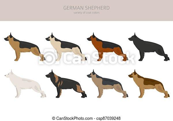 German shepherd dogs different coat colors. Shepherd characters set - csp87039248