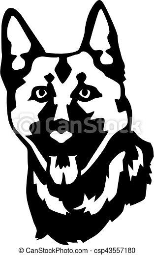 German Shepherd head - csp43557180