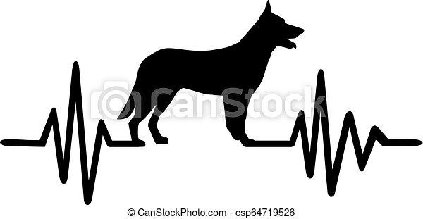 German Shepherd pulse - csp64719526