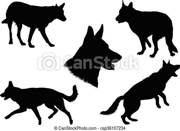 German Shepherd Silhouette Collecti - csp36107234