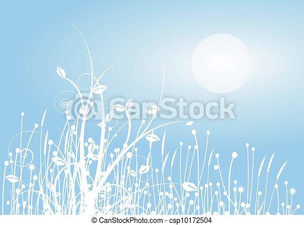 Grasses in the winter - csp10172504