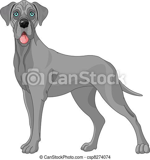 Great Dane dog - csp8274074