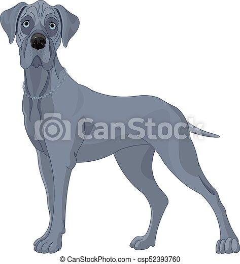 Great Danes Dog - csp52393760