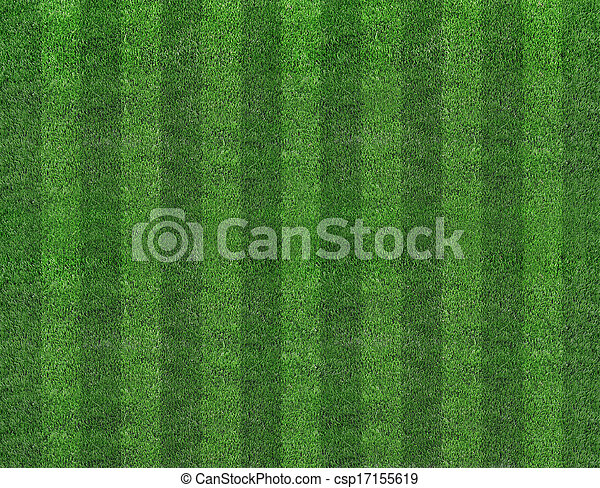 Green football field grass - csp17155619