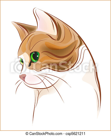 hand drawn portrait of ginger tabby cat - csp5621211