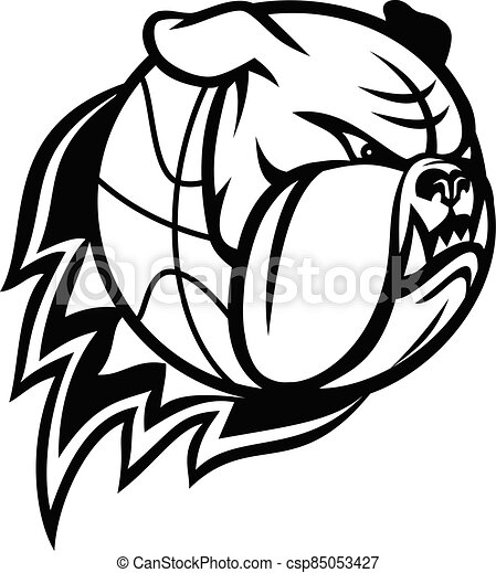 Head of English Bulldog or British Bulldog Basketball Ball on Fire Blazing Mascot Black and White - csp85053427