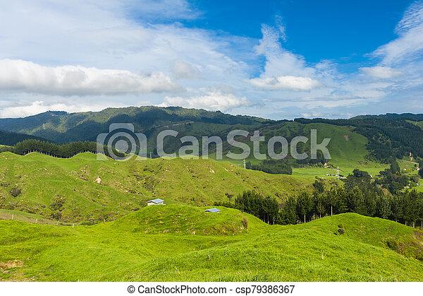 Hills of New Zealand - csp79386367
