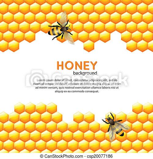 Honey bee background - csp20077186