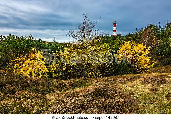 Lighthouse in Wittduen on the island Amrum, Germany - csp64143097