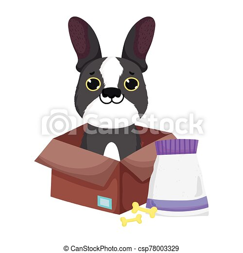 little dog in box with bones and food pets - csp78003329