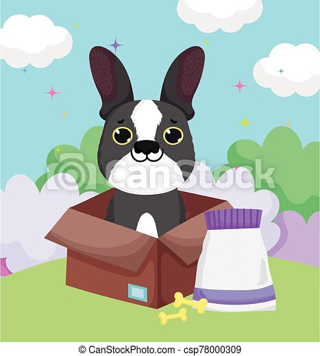 little dog in box with bones and food pets - csp78000309