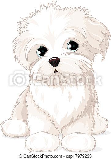 Maltese Puppy Dog - csp17979233