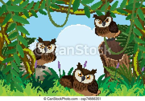 Owls in the woods - csp74666351