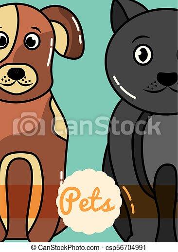 pets dog and cat - csp56704991