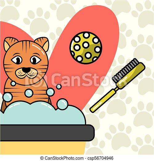 pets dog and cat - csp56704946