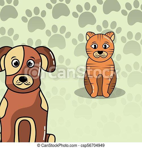 pets dog and cat - csp56704949