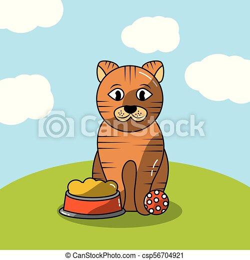 pets dog and cat - csp56704921