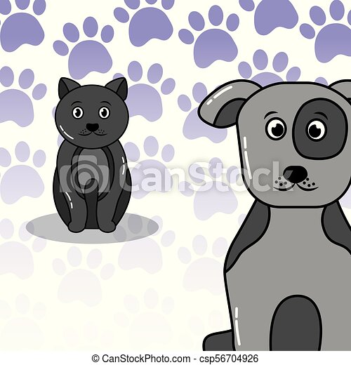 pets dog and cat - csp56704926