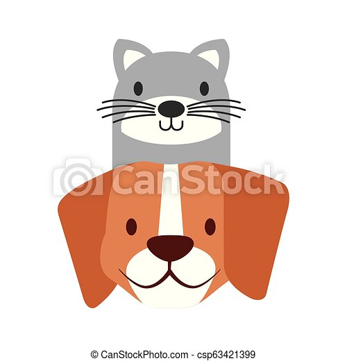 pets dog and cat on white background - csp63421399