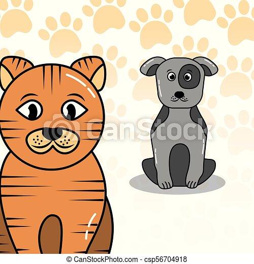 pets dog and cat - csp56704918