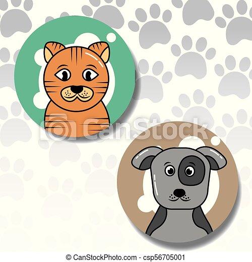 pets dog and cat - csp56705001