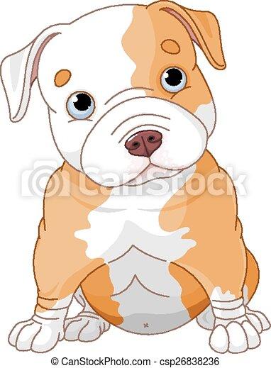 Pitbull puppy - csp26838236