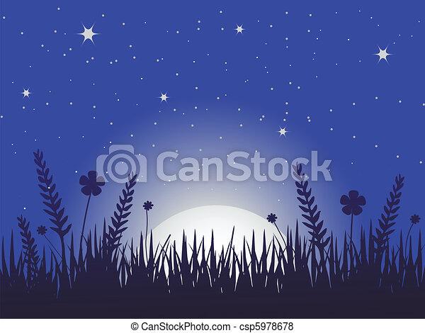 Poppy meadow at night - csp5978678