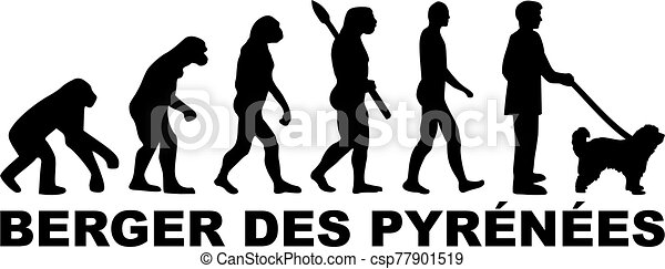 Pyrenees Shepherd evolution german - csp77901519